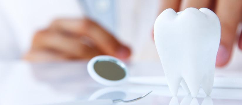 Endodontie Radauti - Cabinet Stomatologic Dr Finkel (1)